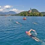 Fresh-Water-Swimming