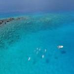 Salt-Water-Swimming-In-Sea