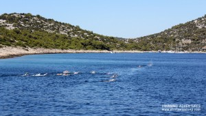 Strel-Swimming-Croatia-Holidays-11